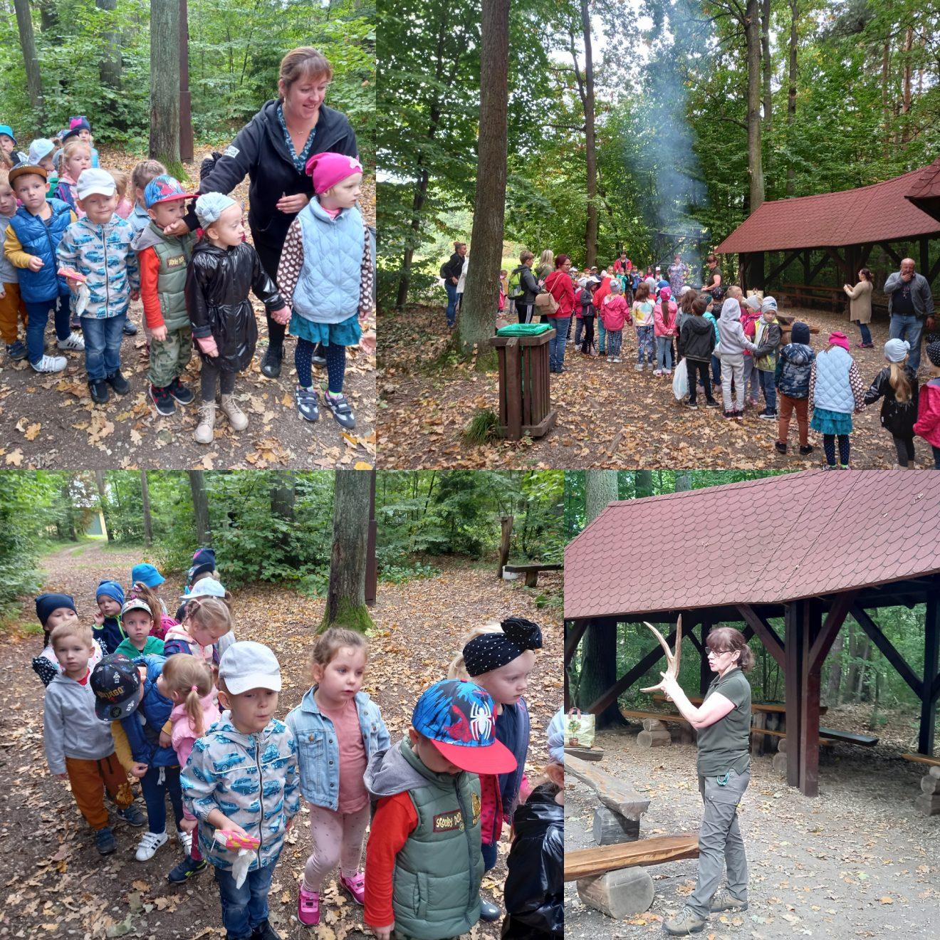 dzieci oglądają dary lasu