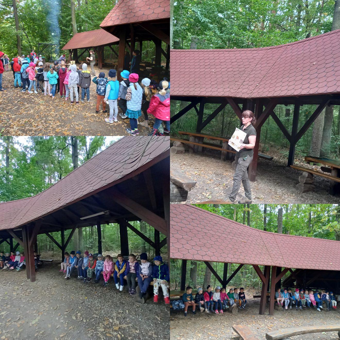 przedszkolaki na wycieczce w lesie
