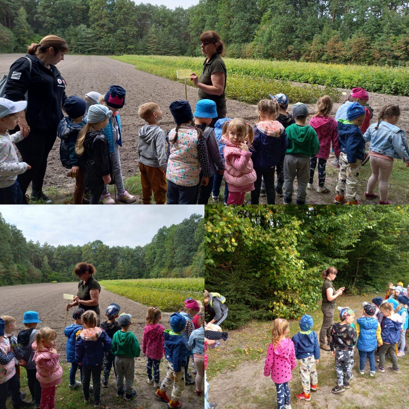 dzieci w szkółce leśnej
