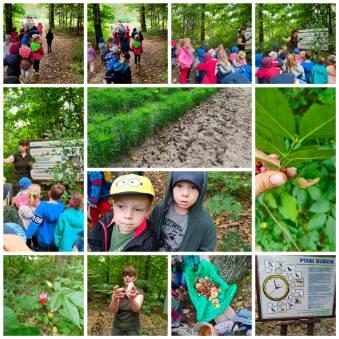 dzieci w lesie